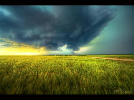 Weathering Wheat