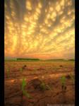 The Painted Sky III