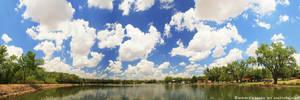 99 Cumulus