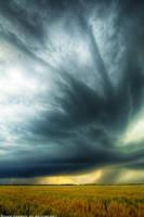Striations Overhead II by FramedByNature