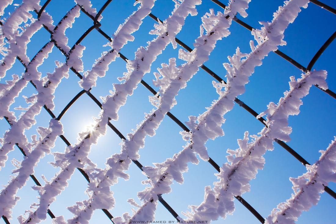 Frozen in February by FramedByNature