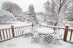 33: Backyard Blizzard