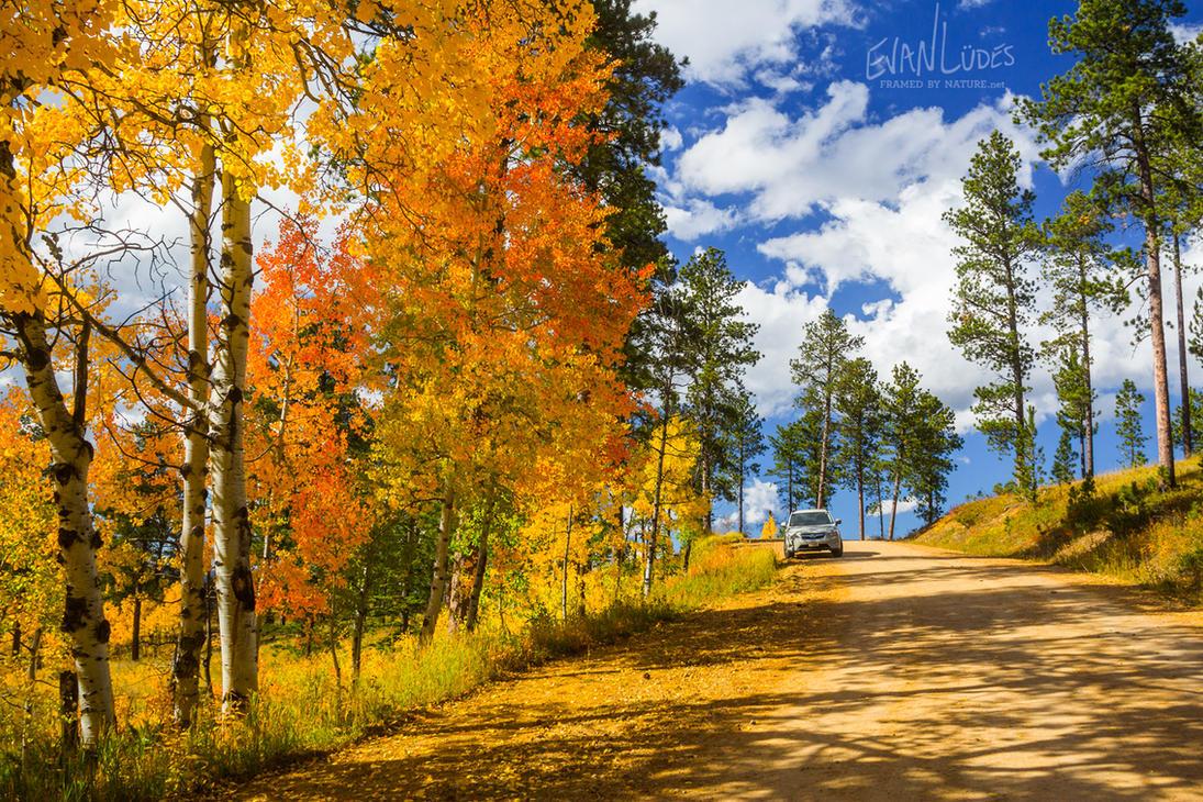 Colors of Terry Peak by FramedByNature