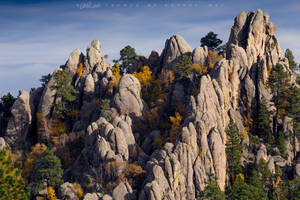 Gold in The Hills by FramedByNature