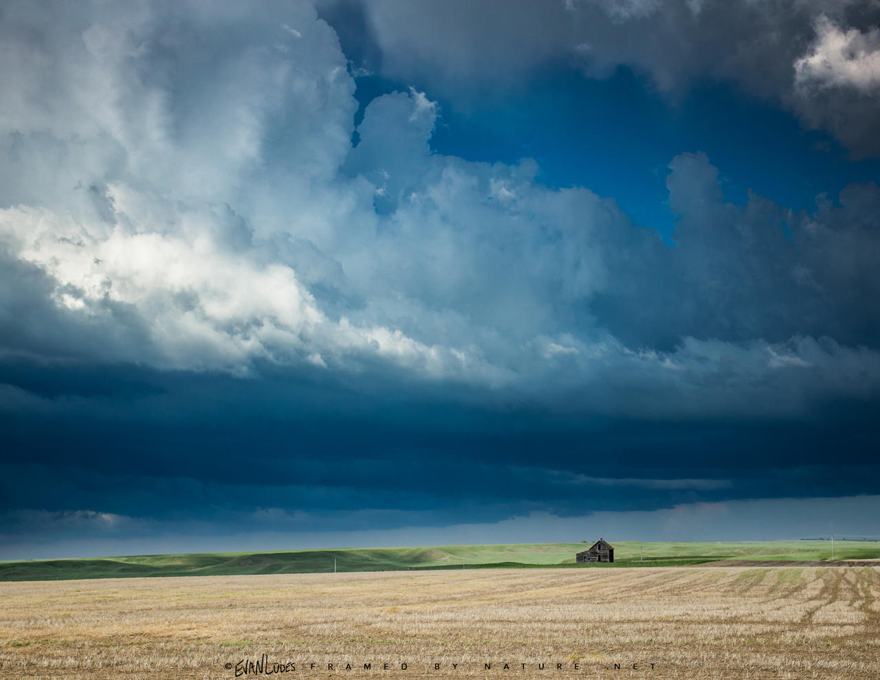 Homestead Tempest by FramedByNature