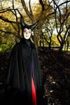 Wicked Lady by Elemental-Sight
