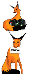 Foxes for website. by reco-rem
