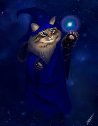The Wizard Cat by karend07
