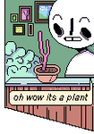 Oh Wow Its A Plant