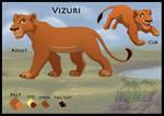 Character sheet: Vizuri