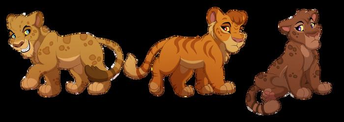 Individual Adops: Lion Hybrids