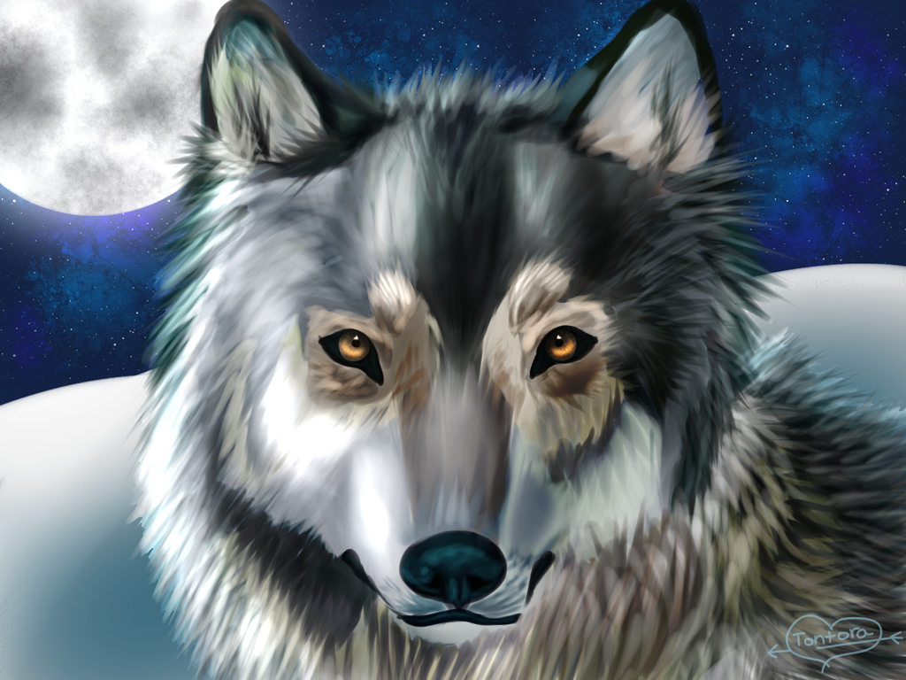 Moonlit glare by Tontora