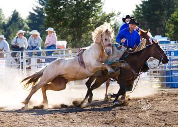 Shelton Rodeo- Lunge