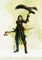 Falconer Wizard by LauraBevon