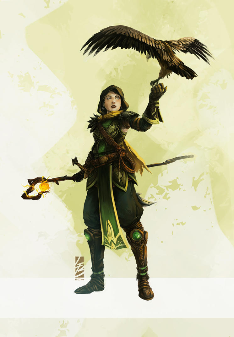 Falconer Wizard by LauraBevon