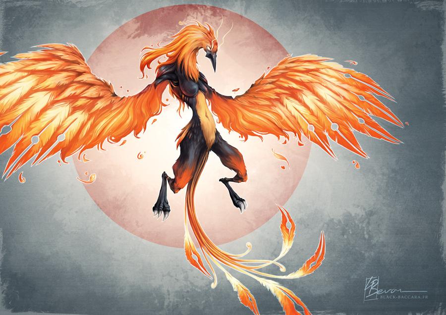 [AF] Blaze - Phoenix by LauraBevon