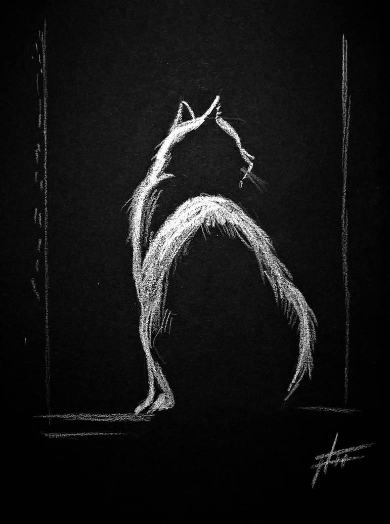 Cat by ArtistHanna