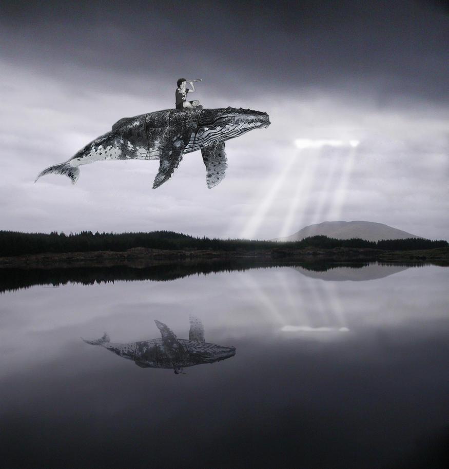 Flying whale zelda