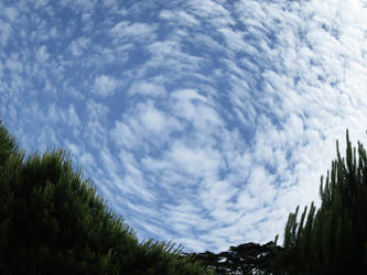 Swirls Above