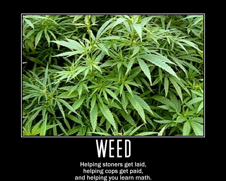 gallery for stoners wallpaper