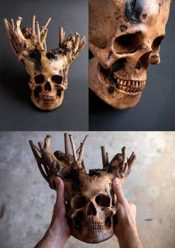 Branched skull - views