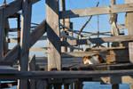 Marina di Pisa - Jan 09 - 2