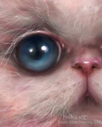 Innocuous- close up