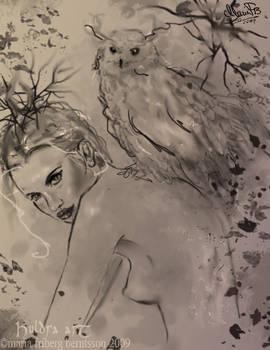 Morning sketch 'Owl'