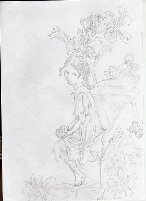Mallow Flower Fairy Mallow Flower Fairy by