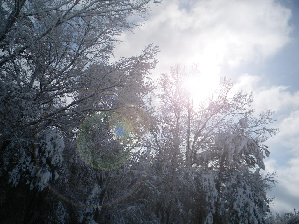 Sun Snow by thenacken