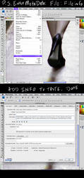 Adding Meta Data in Photoshop to stock or whatever by ADE-doodles