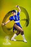 Chun-Li / Warrior Lady
