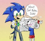 Sonic's Fan