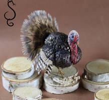 Miniature Turkey by Teensyweensybaby