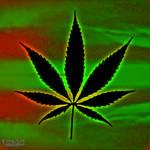 Wallpaper Weed