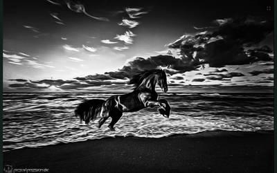 Black Horse by BA666