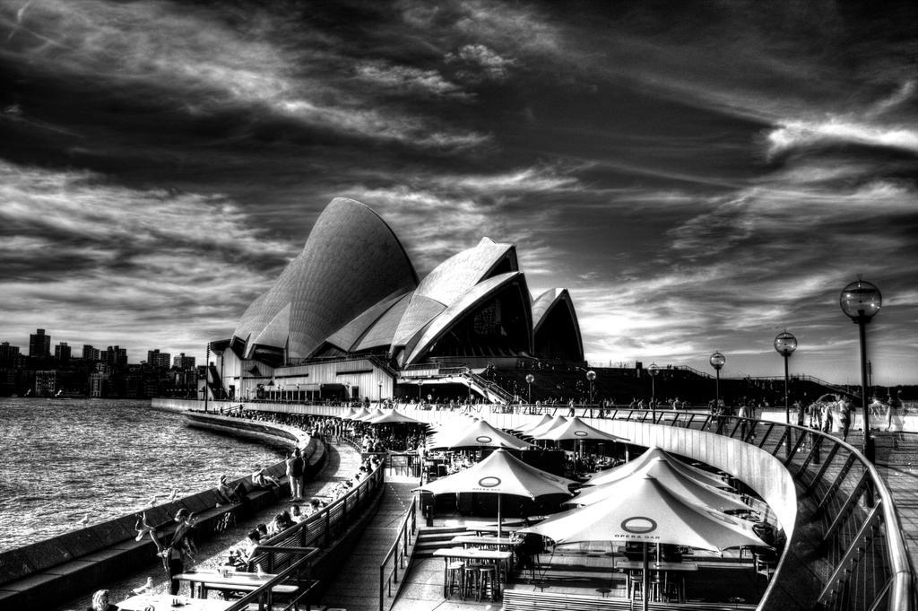 Black speed dating tampa in Sydney