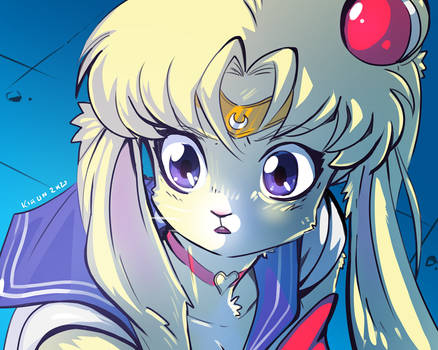 Sailor Moon redraw challenge #2