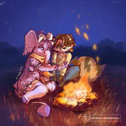 Campfire night v2