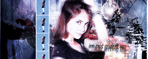 Willa Holland Signature by omgolivia123