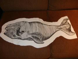 Bowhead Whale design by modastrid