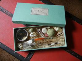 Specimen box no. 1 by modastrid