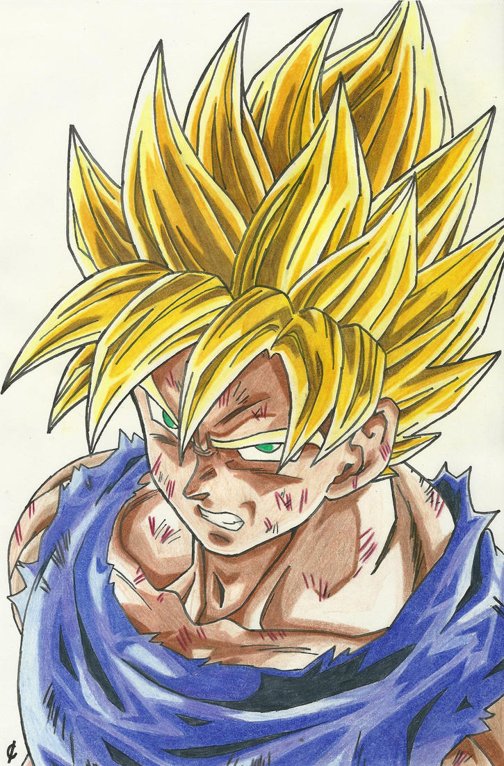 Sangoku super sayen by saasuke45 on deviantart - Sangoku super sayen 6 ...