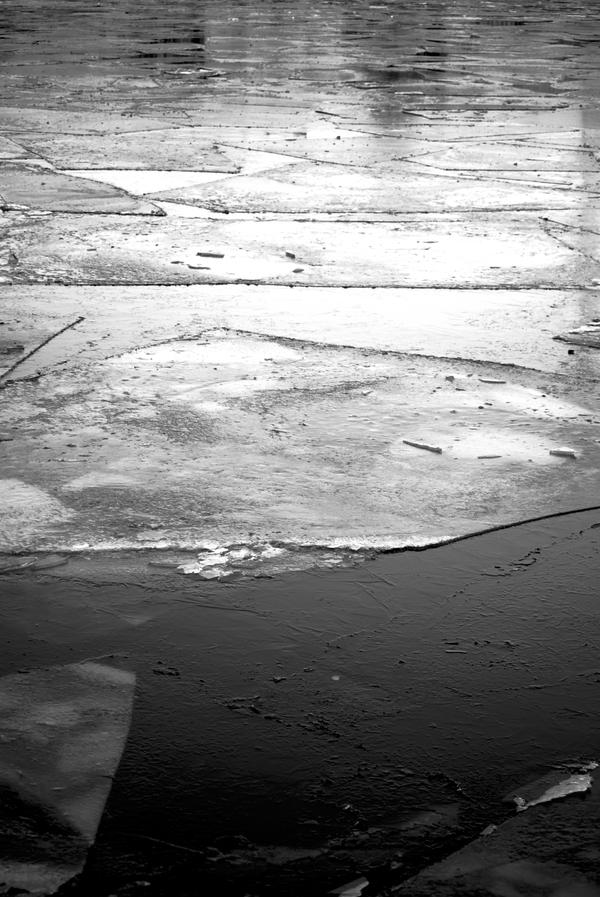 Swimming ice on the Spree