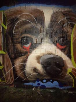 Streetlife Art - Dog Nose