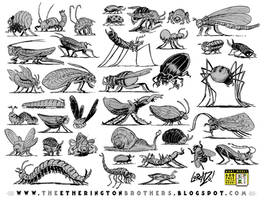 38 Insects, Bugs and Creepy-Crawlies by EtheringtonBrothers