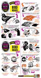 How to draw BIRDS HEADS tutorial