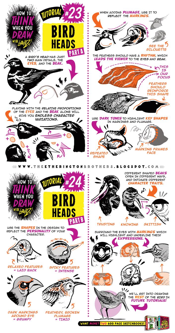 How to draw BIRDS HEADS tutorial by STUDIOBLINKTWICE