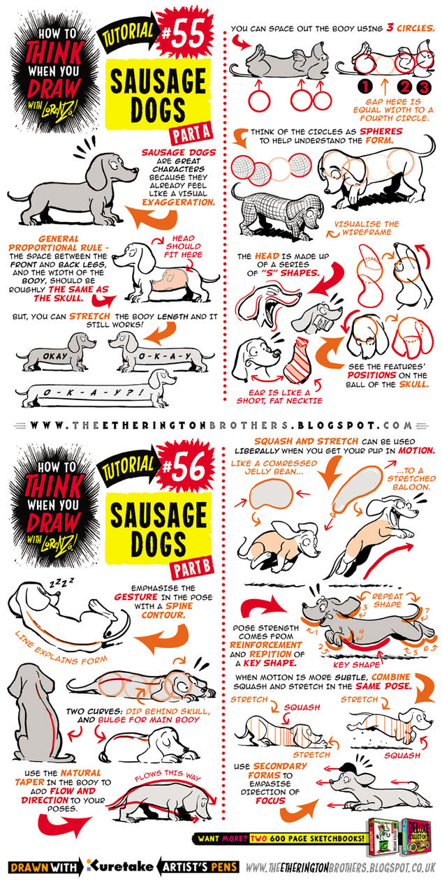 How to draw Sausage Dogs Dachshund tutorial by STUDIOBLINKTWICE