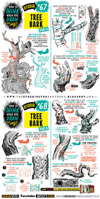 How to draw TREE BARK tutorial